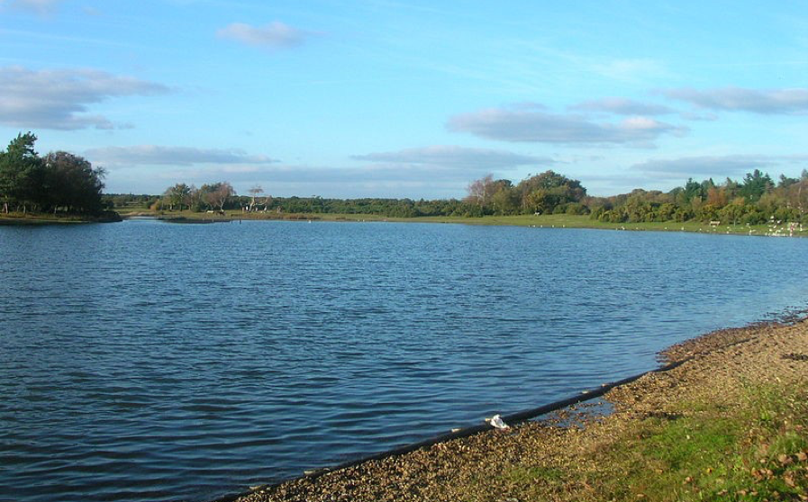 Hatchet Pond