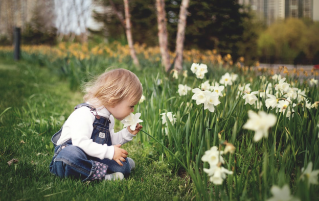 Wildlife Activities to Introduce Little Ones to Nature